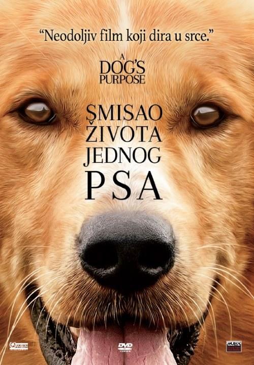 Dating site za samce sa psima